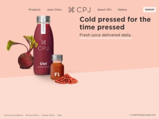 CPJ web design