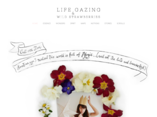 Life Gazing web design
