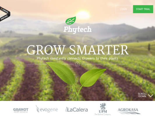 Phytech web design