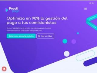 Practipago web design