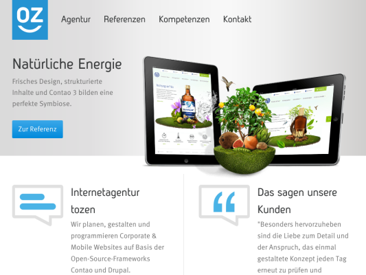 tozen web design